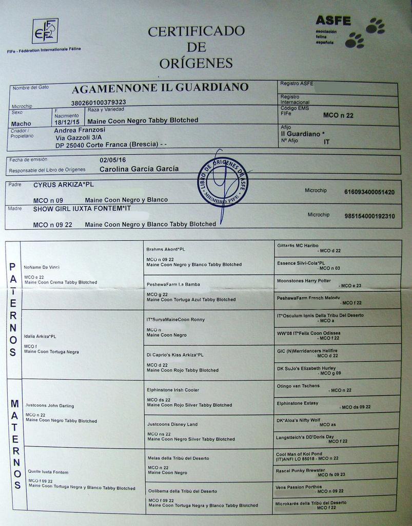 Perfecto Nha Flebotomía Certificación Ornamento - Certificado Actas ...